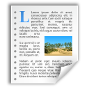 application_vnd_oasis_opendocument_text